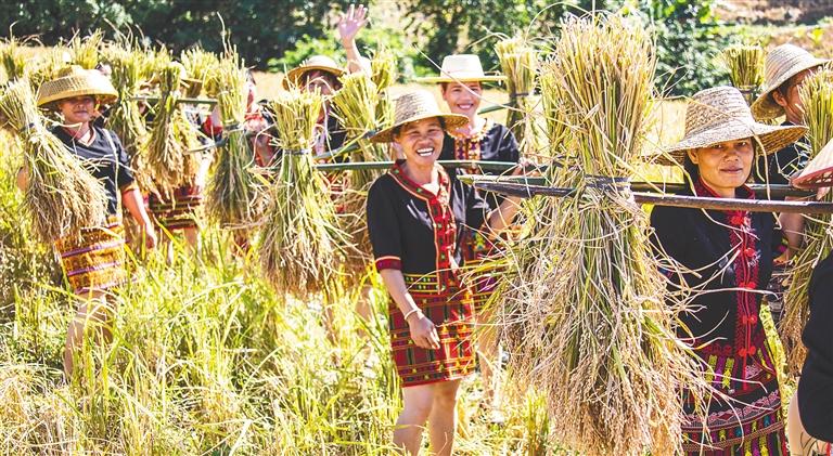 """2019年""""啦奥门""""山兰文化节在白沙青松乡举行"""